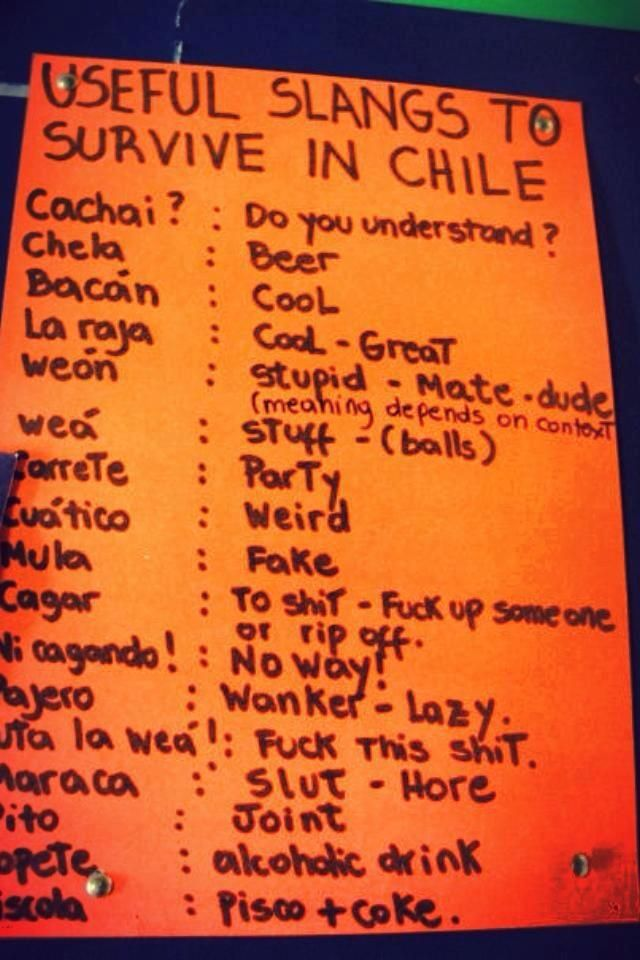 Chilean Slangs Family Pinterest Dream Vacations