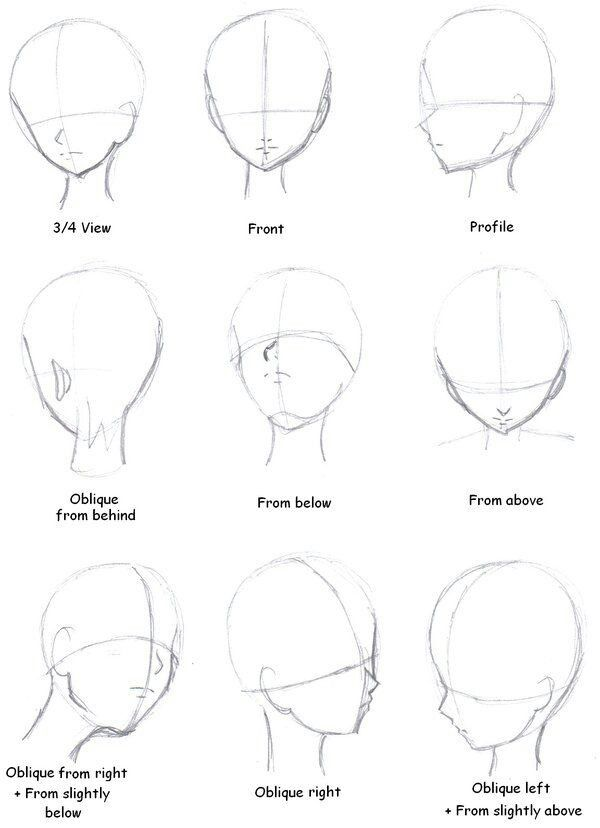 Drawing The Head 3 4 View Front Profile Oblique From Behind From Below From Above Oblique From Right And S Drawing Tutorial Drawing Tips Anime Drawings