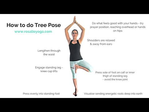 beginners yoga how to do tree pose  youtube in 2020