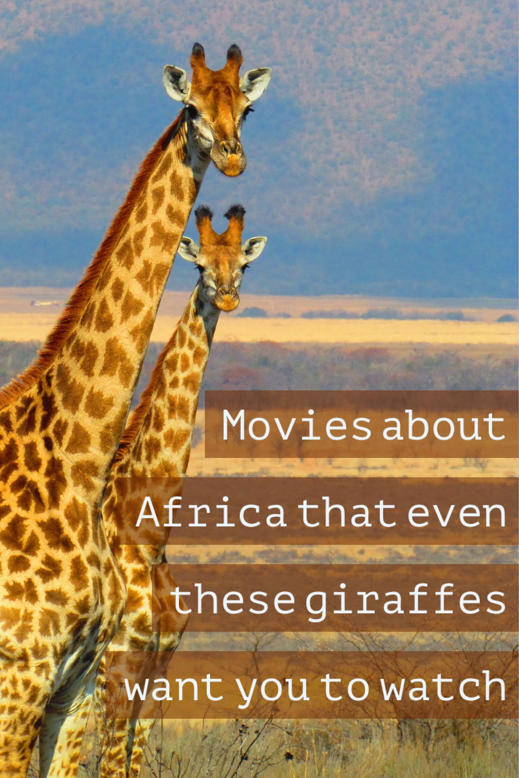 20 Movies About Africa to Watch Before Visiting the