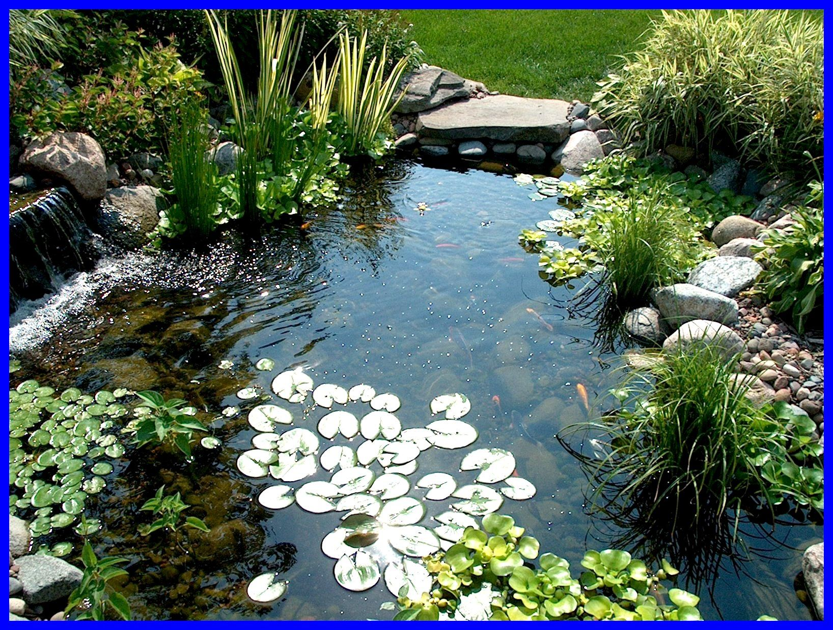 bonne idee pour le bassin | Ponds backyard, Small backyard ... on Small Backyard Pond With Waterfall id=48420