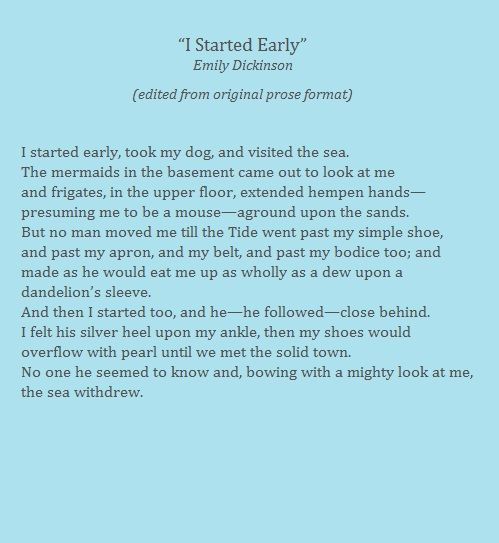 emily dickinson i started early took my dog