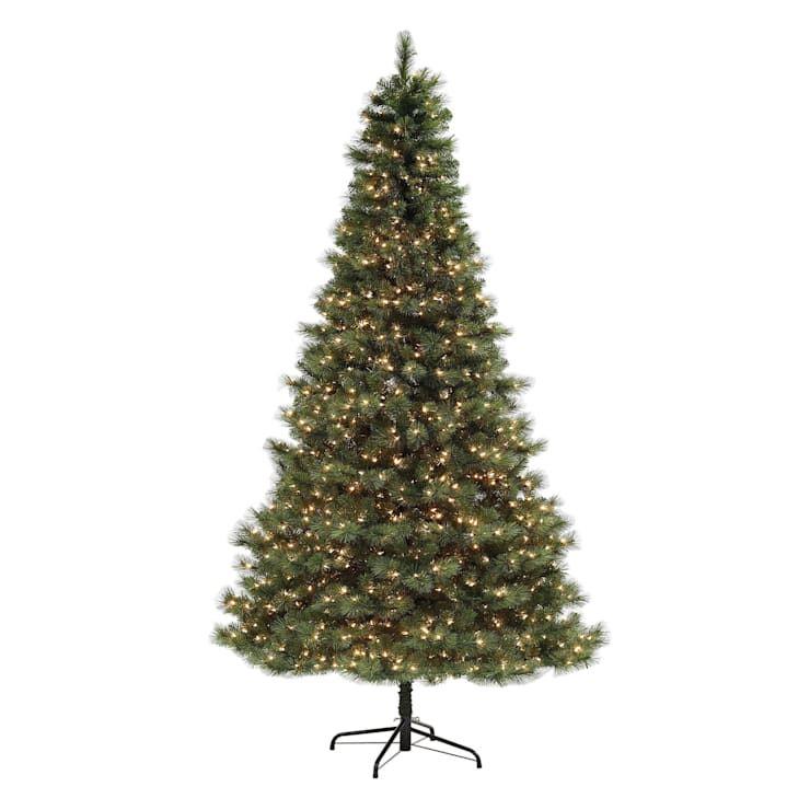 C41 9 Pre Lit Carolina Pine Christmas Tree Pine Christmas Tree Christmas Tree Classic Christmas Tree