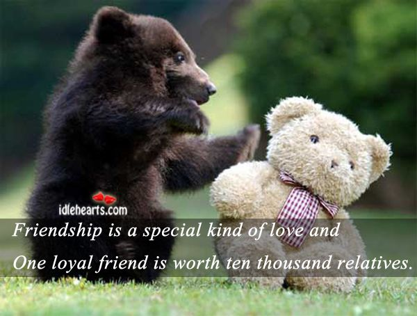 One Of A Kind Friend Quotes: Friendship Is A Special Kind Of Love & One Loyal Friend Is