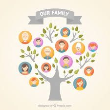 image result for graphic design family tree family history book