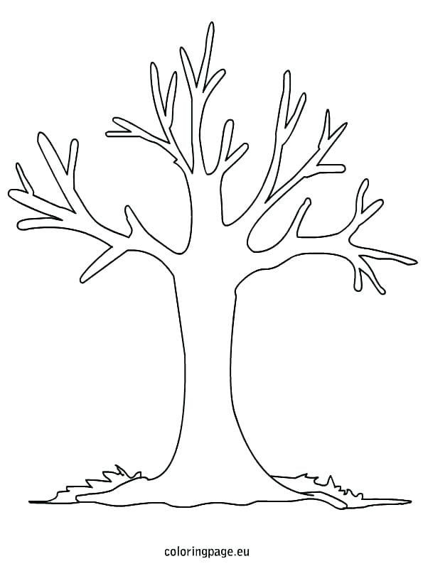 Tree Outline Coloring Page Fall Printable Apple Copy Pages Bare