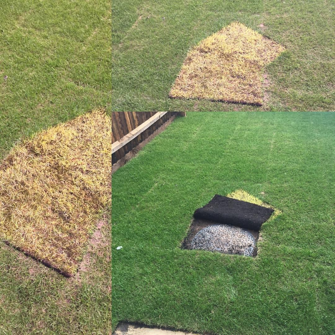 Yard Covering Ideas: How To Hide A Manhole Cover In A