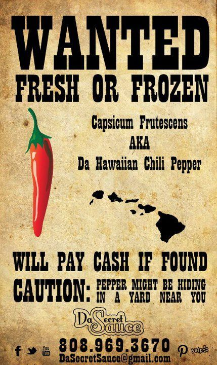 Wanted Peppers!! Repin Please..Mahalo