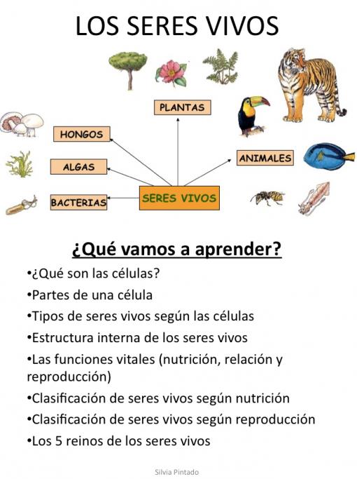 Os dejo el tema 1 de Ciencias Naturales de 5º de E.P. Los seres ...