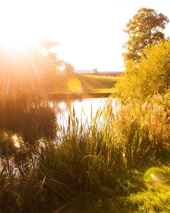 Golden English Countryside United Kingdom Landscape by ohhsnap