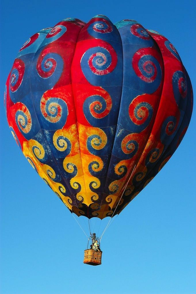 Pin by Deanna Veronica on Balloons in 2020 Hot air
