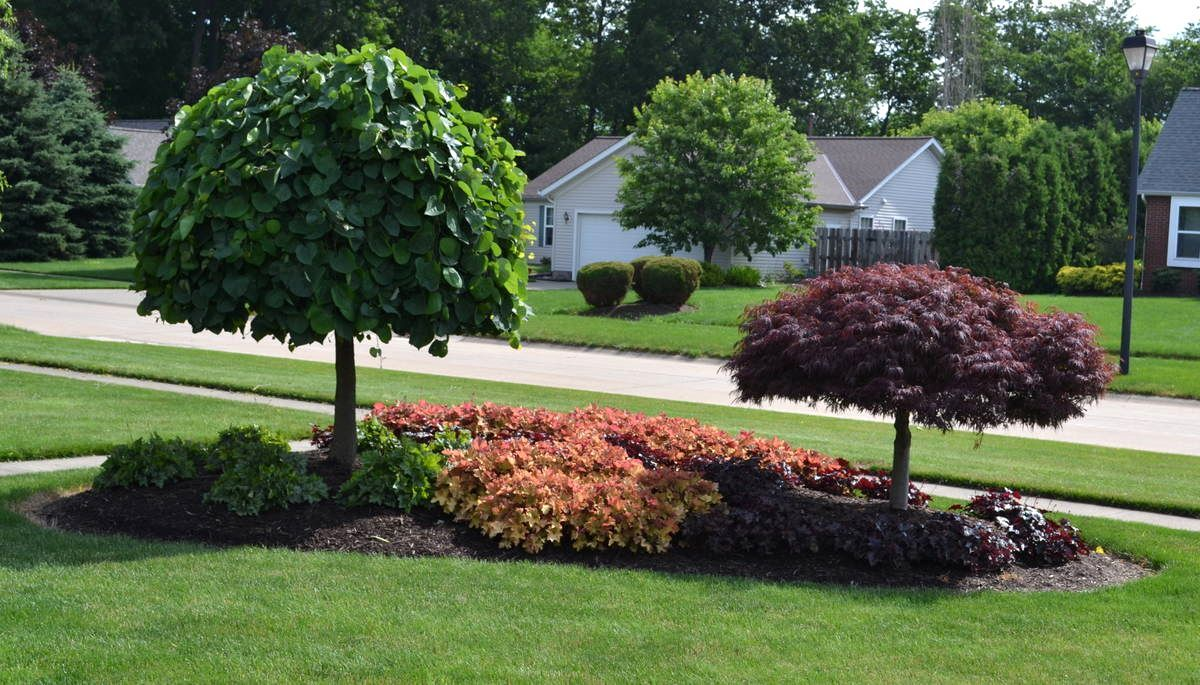 front yard landscaping ideas zone