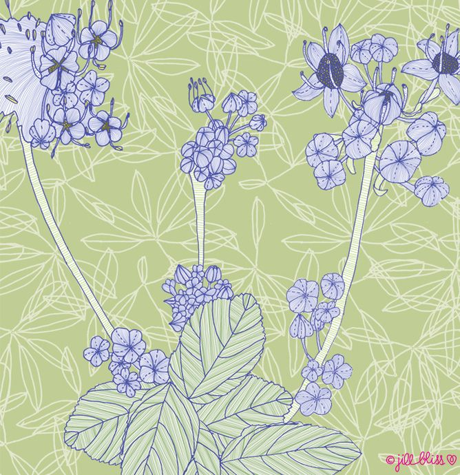 floral sprouting (jill bliss)
