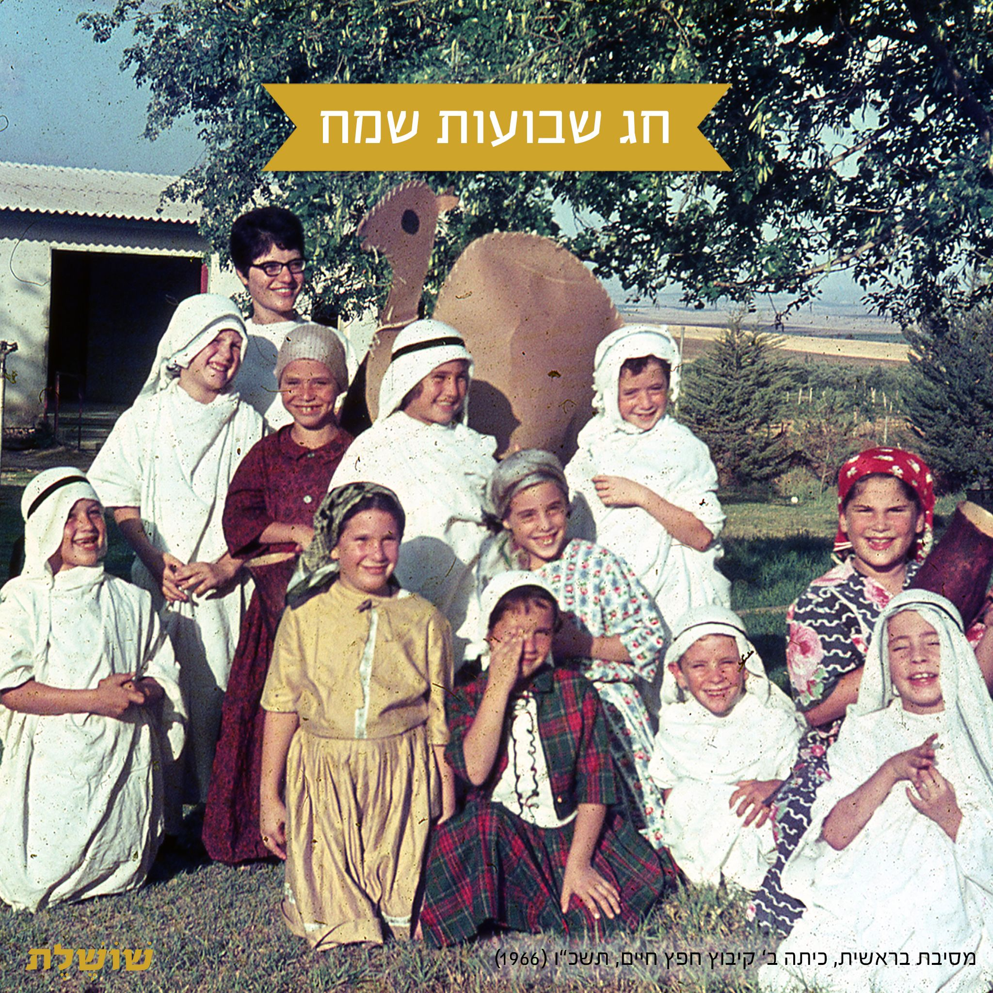 #happy #holiday #שבועות #shavuot #Hafetz Haim #kibbutz #israel #vintagephoto #oldpictures #oldfamilyphotos #60s #heritage @shoshelet