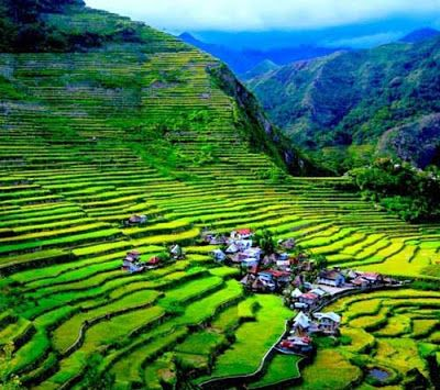 The Spectacular Rice Terraces In The Philippines Hd