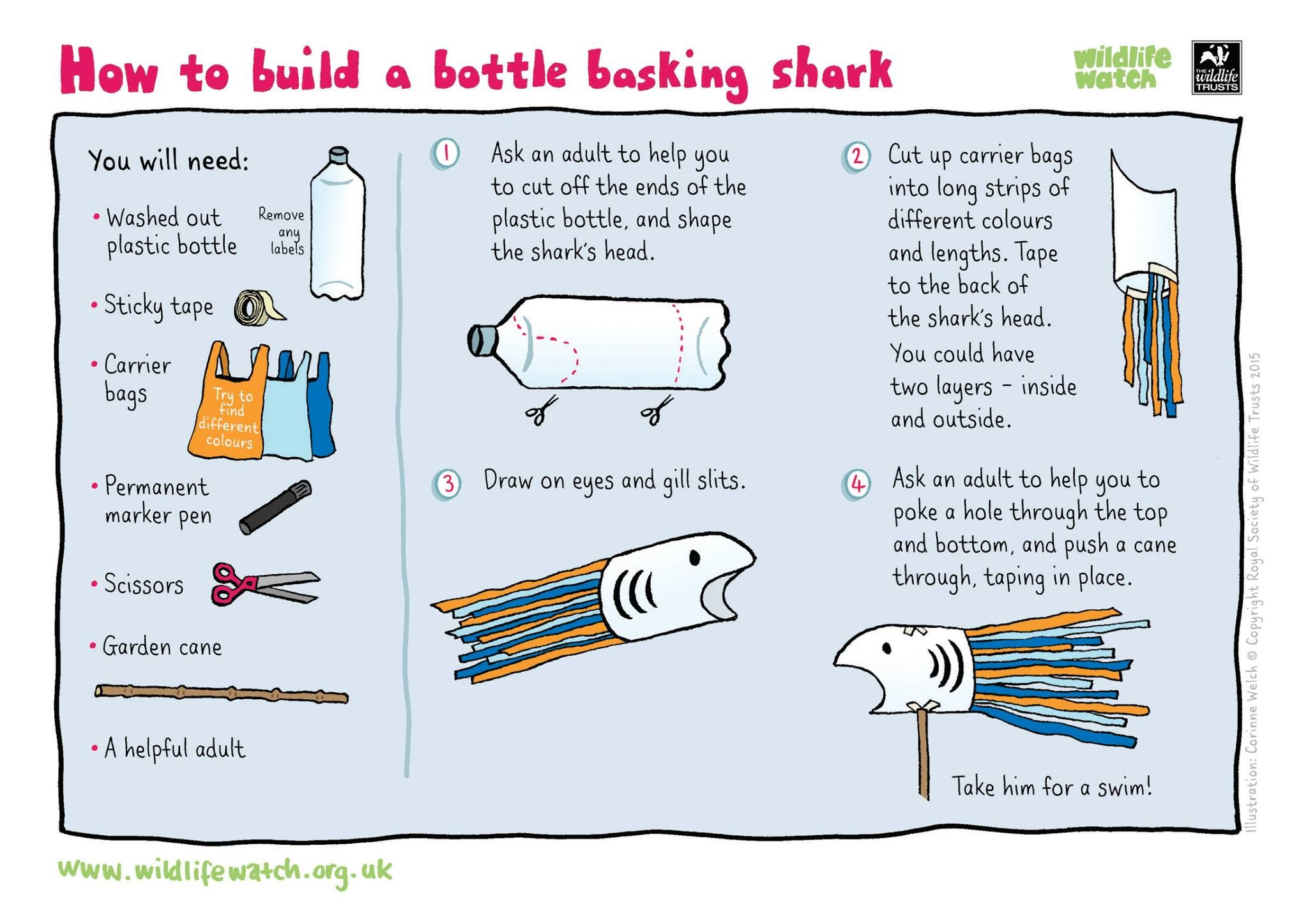 Build Your Own Bottle Basking Shark