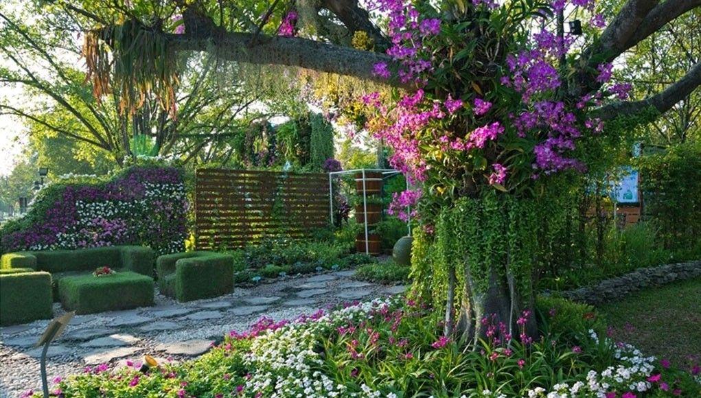 Resultado de imagen para borduras de perennes jard n for Decoracion de arboles de jardin