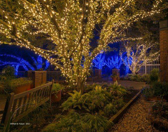 Botanical Gardens Meadowlarku0027s Winter Walk Of Lights. Vienna, VA