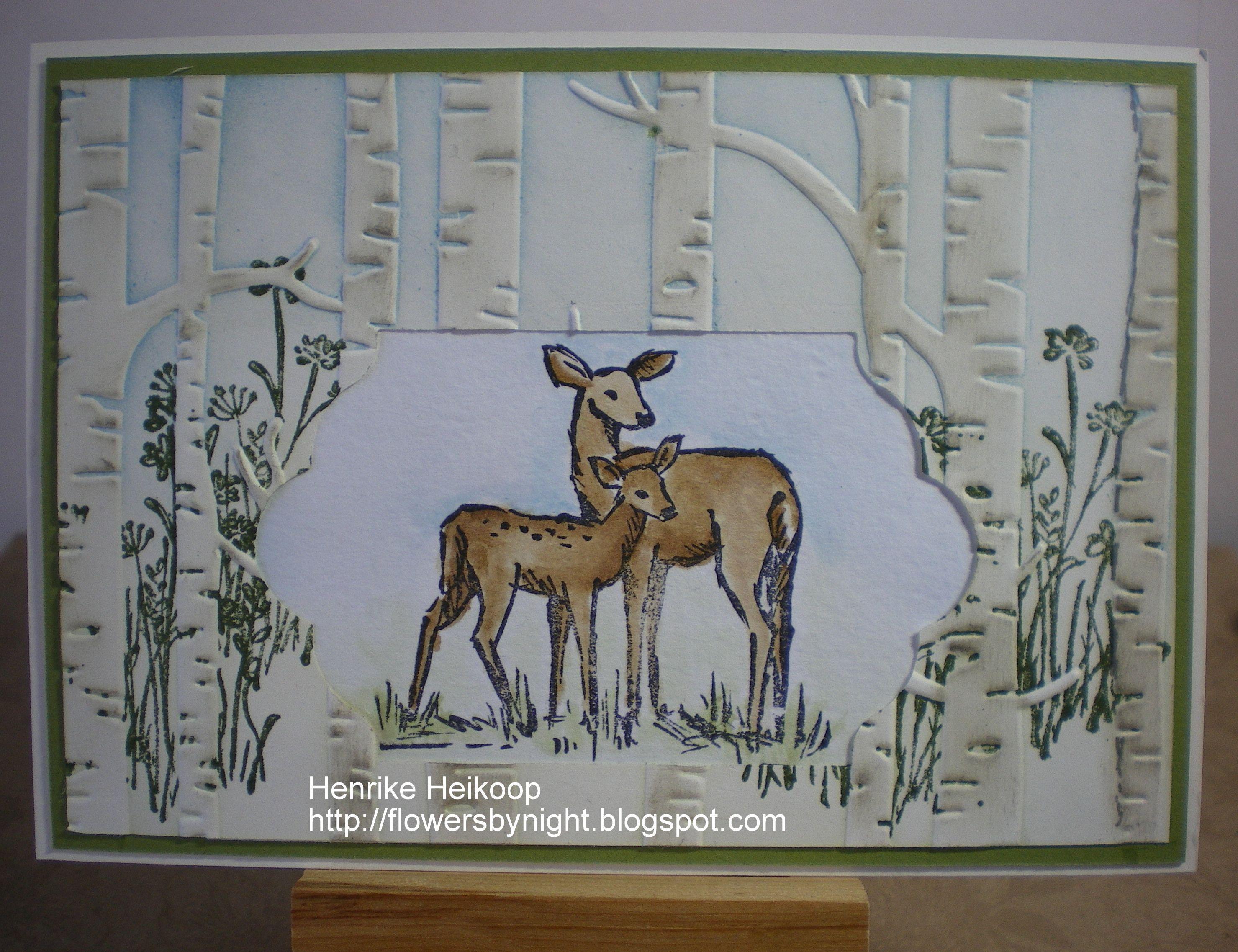 In the Meadow en Woodland Impressions Embossing Folder van Stampin 'Up!