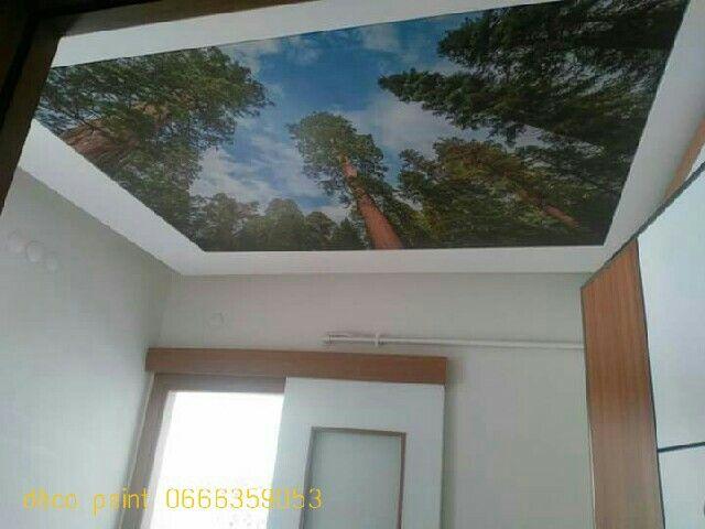 Revétement plafond tendu Bach tendu Bcp de model et motive Finition - peinture plafond mat ou brillant