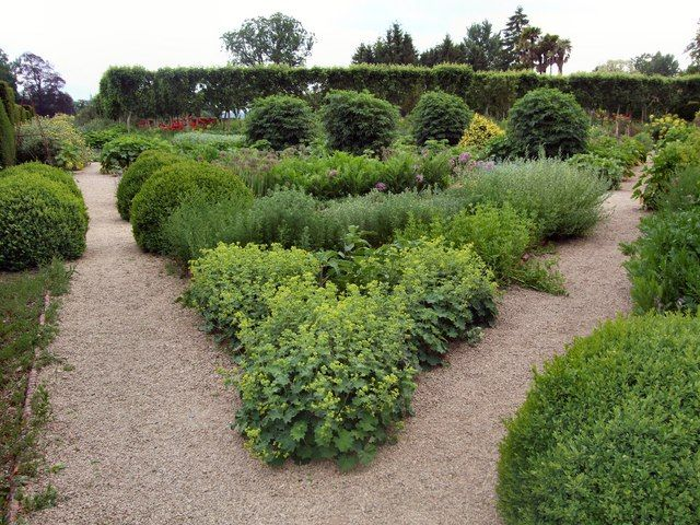 Love the boxwood and lady's mantle. (Walled Garden - Loseley Park by Paul Gillett, via Geograph)