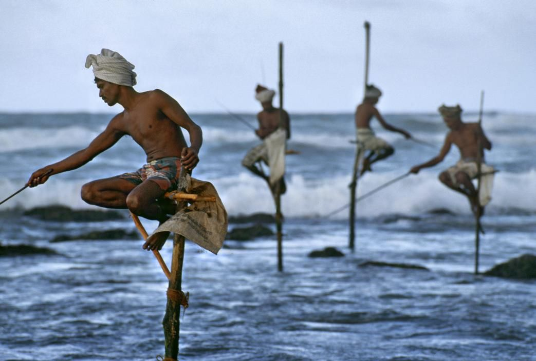 Steve McCurry  SRI LANKA. South Coast. Weligama. 1995. Stilt Fishermen.  http://www.youtube.com/watch?v=sv6FZMeA2Mw greatest game ever played.
