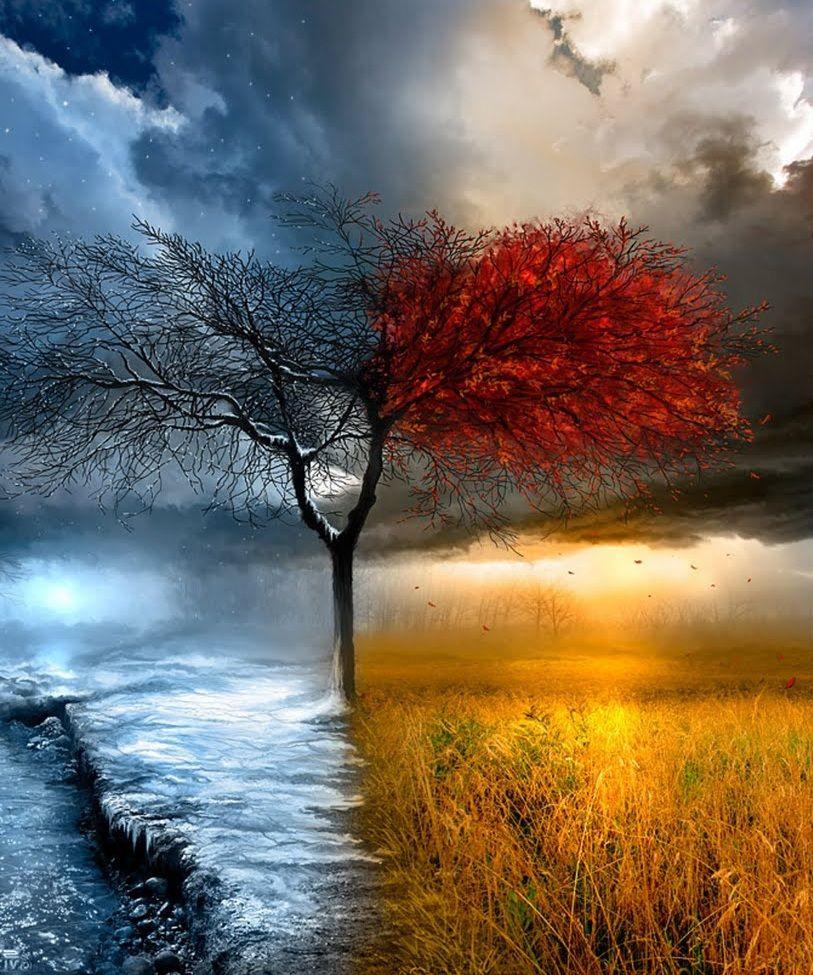 Vier Jahreszeiten Four Seasons Bilder Idee Farbe Jahreszeitenwechsel