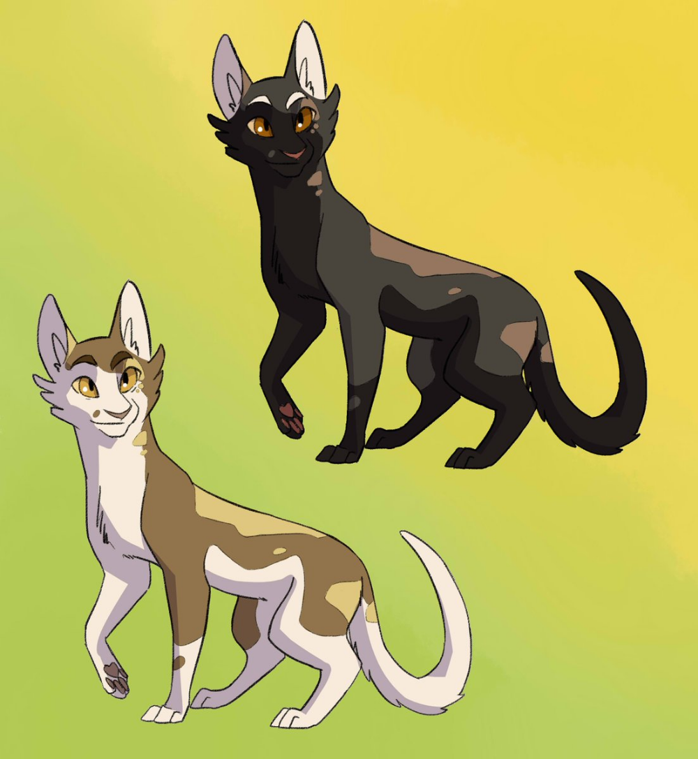 Pin by AHHHH AHH on warrior cats (With images) Warrior