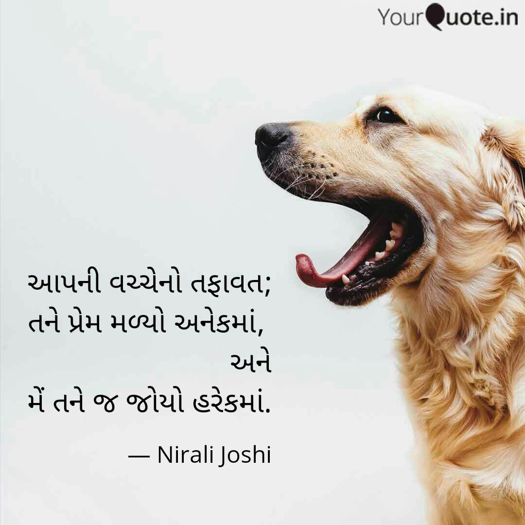 Pin By Nirali Joshi On Attitude With Images Veterinarian
