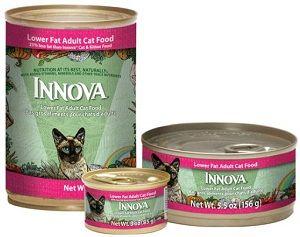 Petsmart Free Innova Cat Food And Sheba Cat Food Coupons Cat