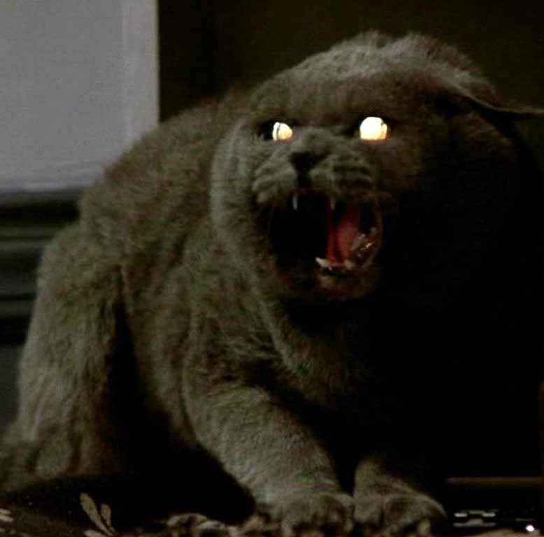 Pet Cemetery Movie 6th Annual Dusk To Dawn Horrorthon
