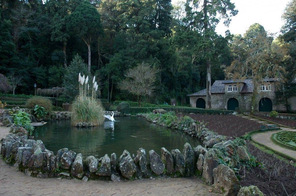 Palácio do Buçaco (Mealhada) - Distrito de Aveiro | Guia da Cidade | Região Centro