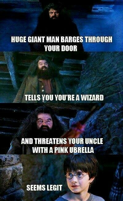 Who Could Blame The Kid For Being Gullible Harry Potter Funny Harry Potter Memes Hilarious Harry Potter Memes
