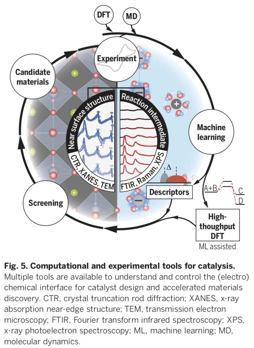 Perovskites In Catalysis And Electrocatalysis Science Energy Storage Activities