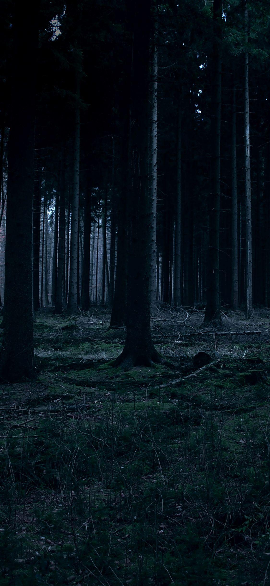 Forest Iphone Wallpaper Ideas #darkiphonewallpaper