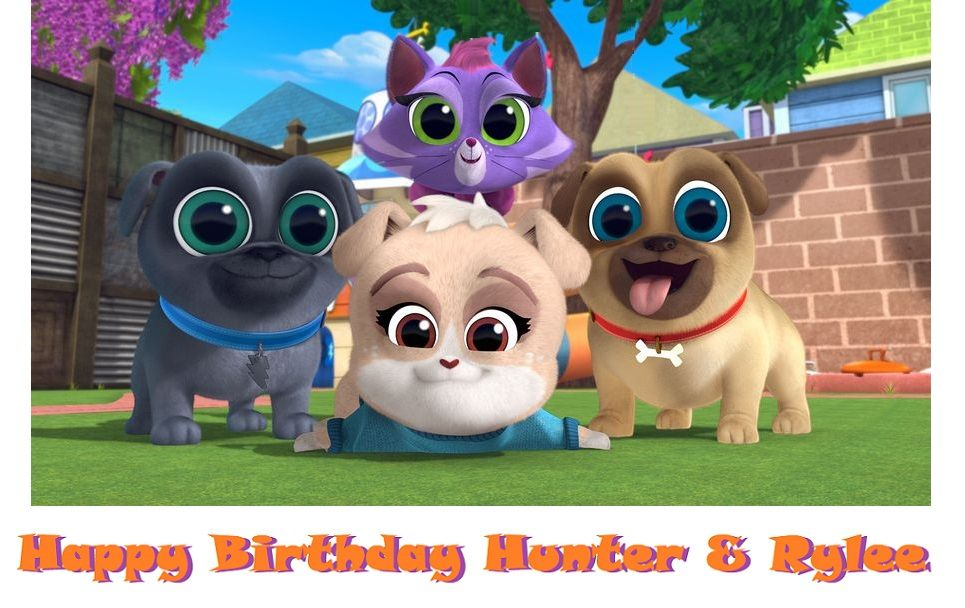 Puppy Dog Pals Edible Cake Topper W Hissy And Kia Cute Puppy