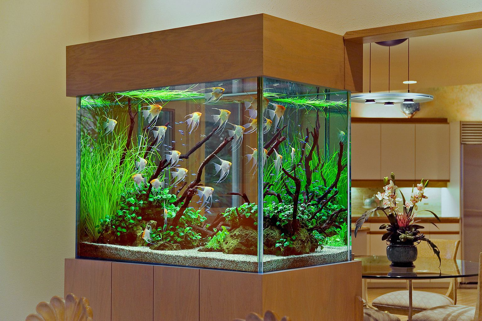 Aquarium Design Group Hardscape Fish Tank Design Aquarium Decorations Glass Fish Tanks