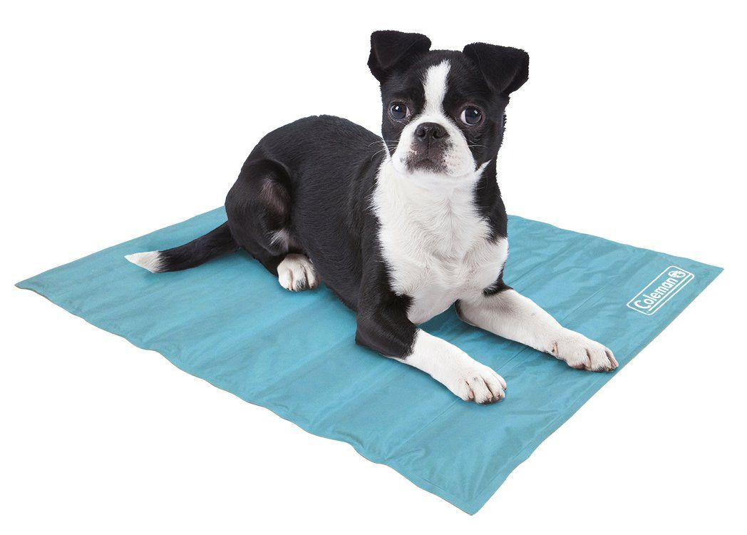 Coleman Comfort Cooling Gel Pet Pad Mat In Small 12x16 For Small Pets Blue Nice Of Your Presence To Drop B Pet Pads Pet Cooling Mat Small Pets