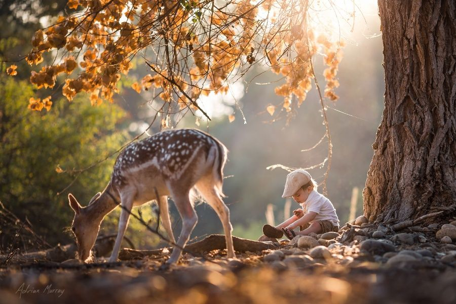 Friends in Nature by AdrianMurray