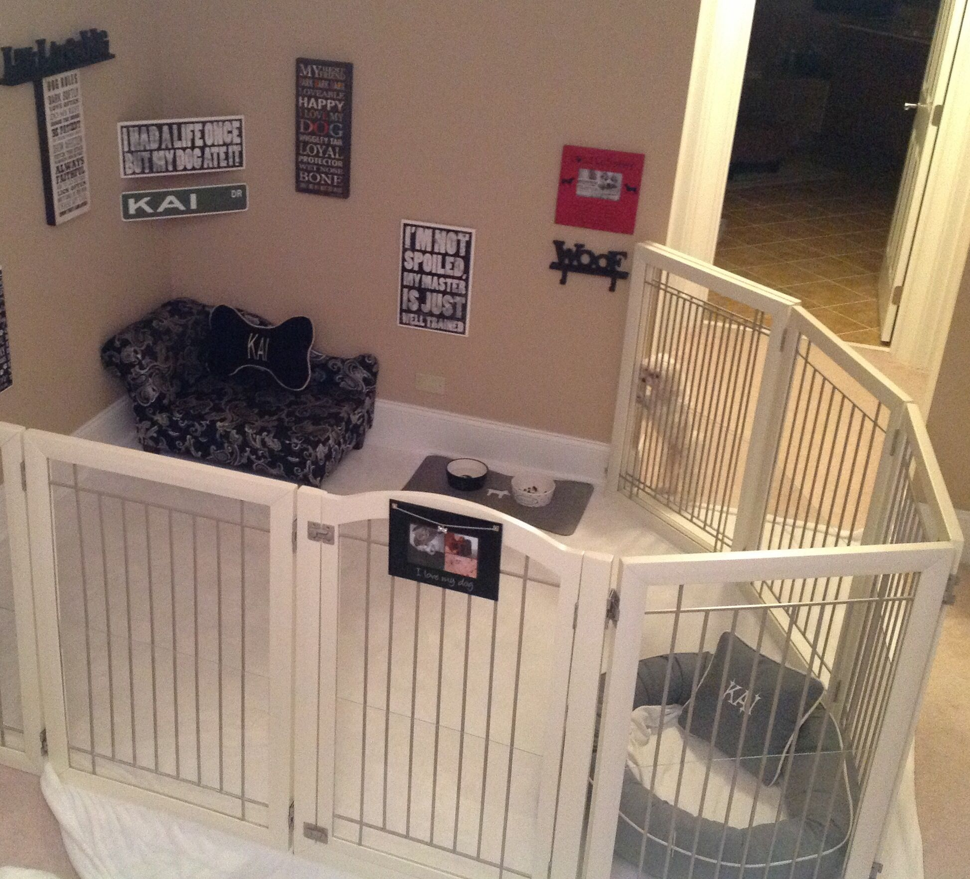 Kai 39 s dog room maltese dog room pinterest dog rooms dog and room - Best dogs for small spaces pict ...