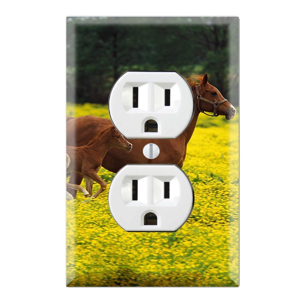 Baby Horse Running with Mom Decorative Wall Plate Cover (Duplex ...
