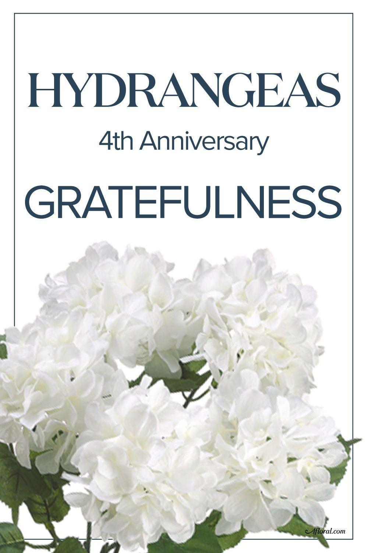 4th Wedding Anniversary Flower Year Anniversary Gifts Anniversary Gifts Anniversary
