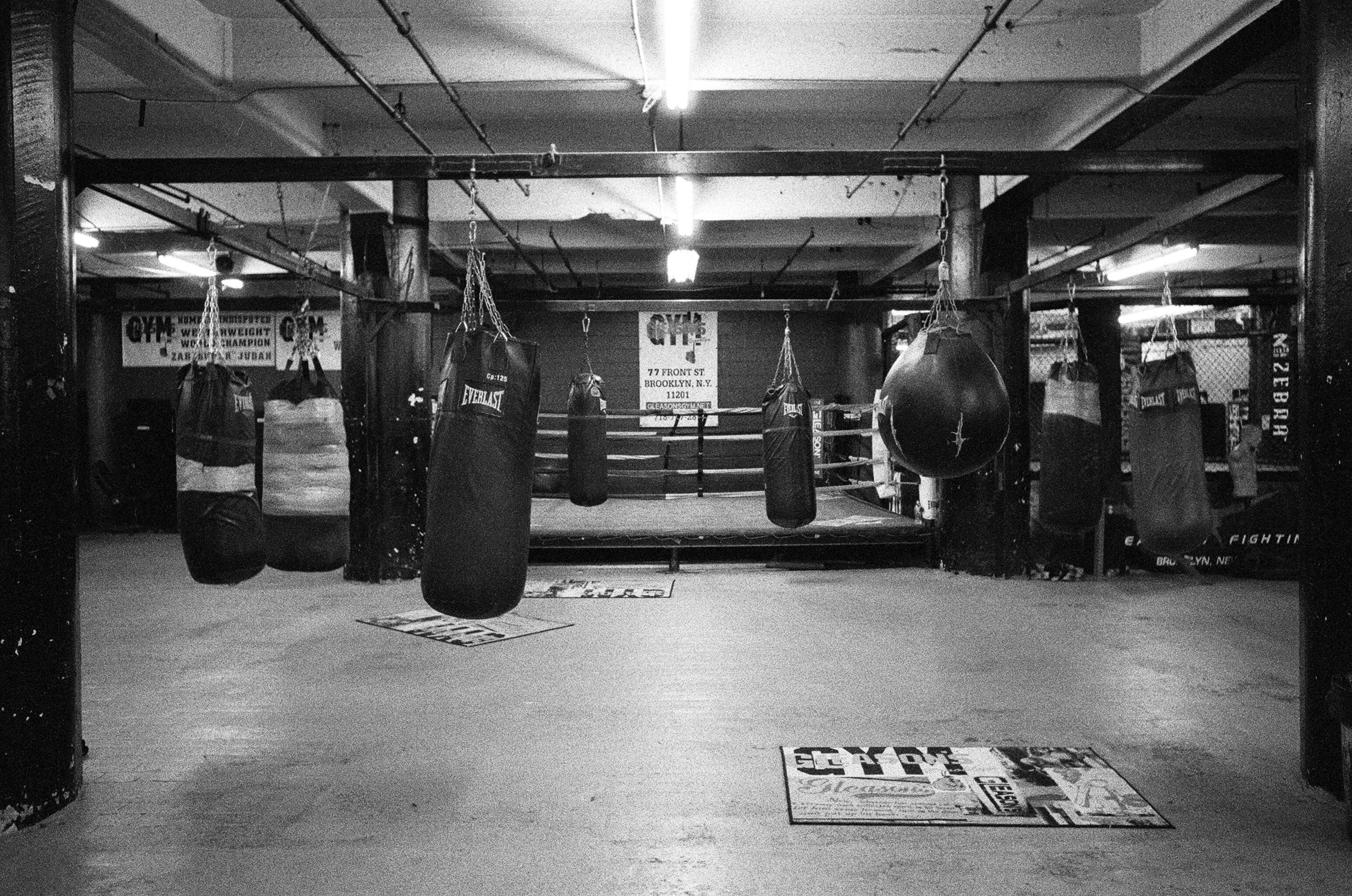 Boxing gyms in Sydney are famous for career building  Those