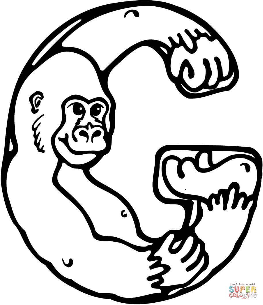 Letter G Is For Gorilla Coloring Page From Learn English Alphabet