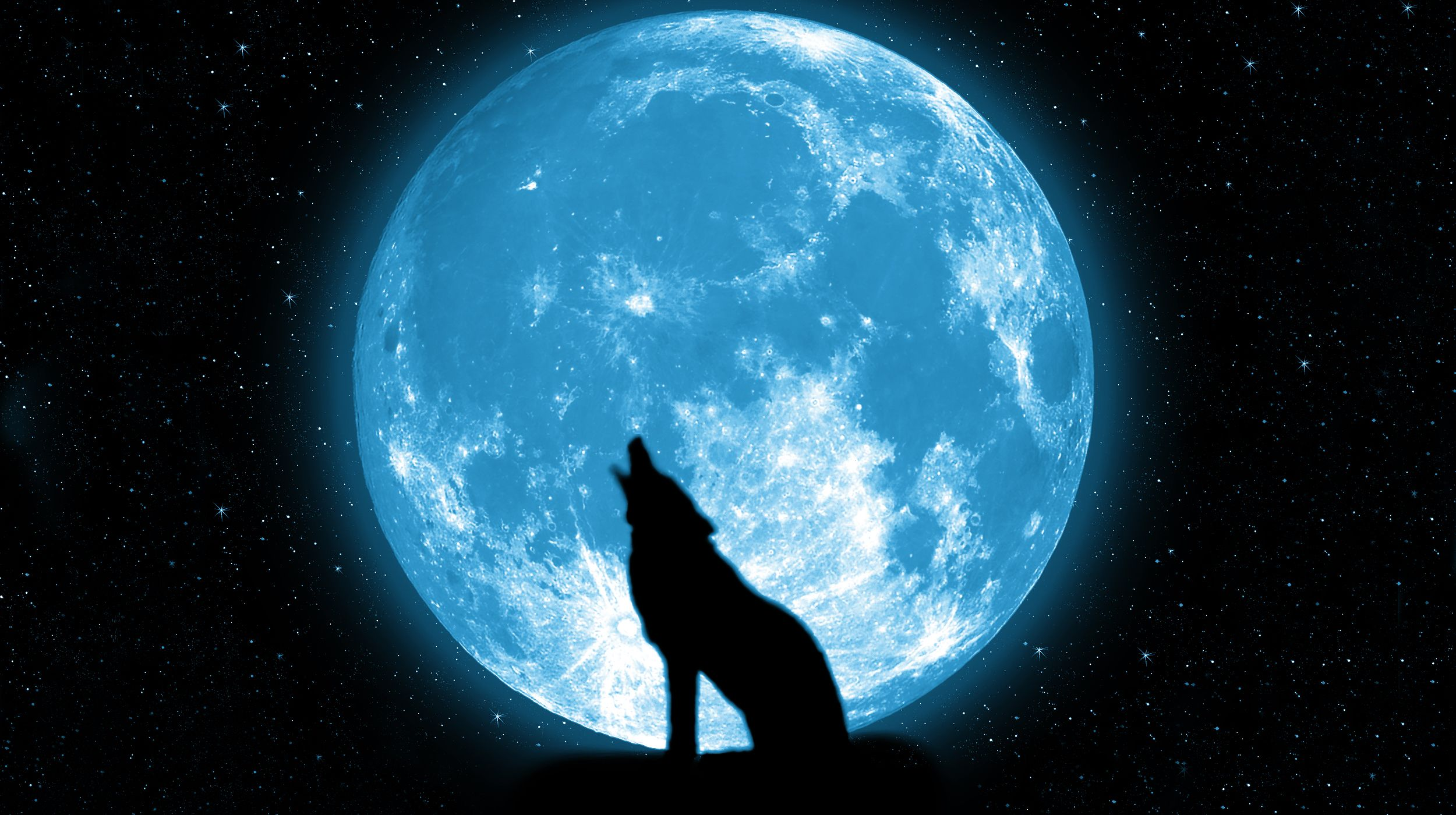 Wolf And Ful Moon Wallpaper Wolf Wallpaper Moon Artwork Black And Blue Wallpaper