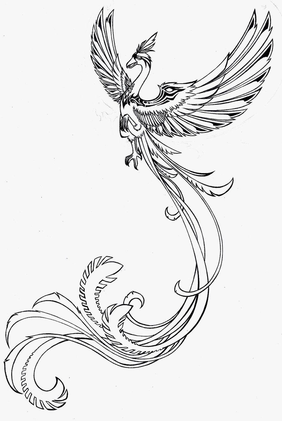 phoenix+drawings | Phoenix drawings | drawing ideas ...