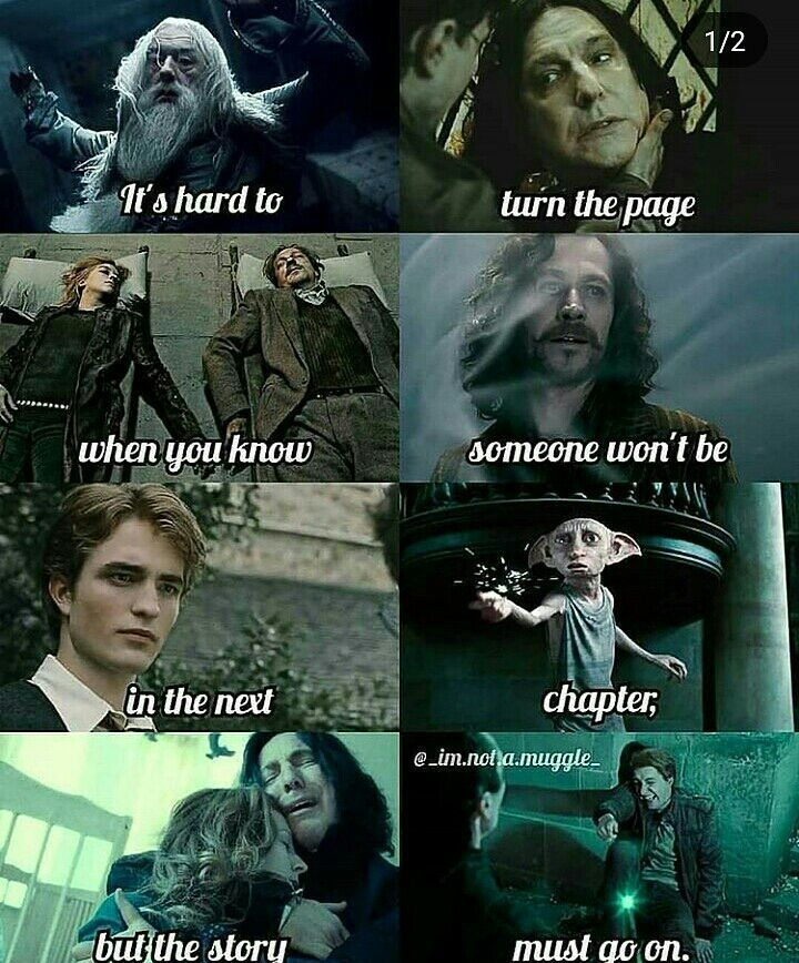 The Other Potter - Chapter 28: