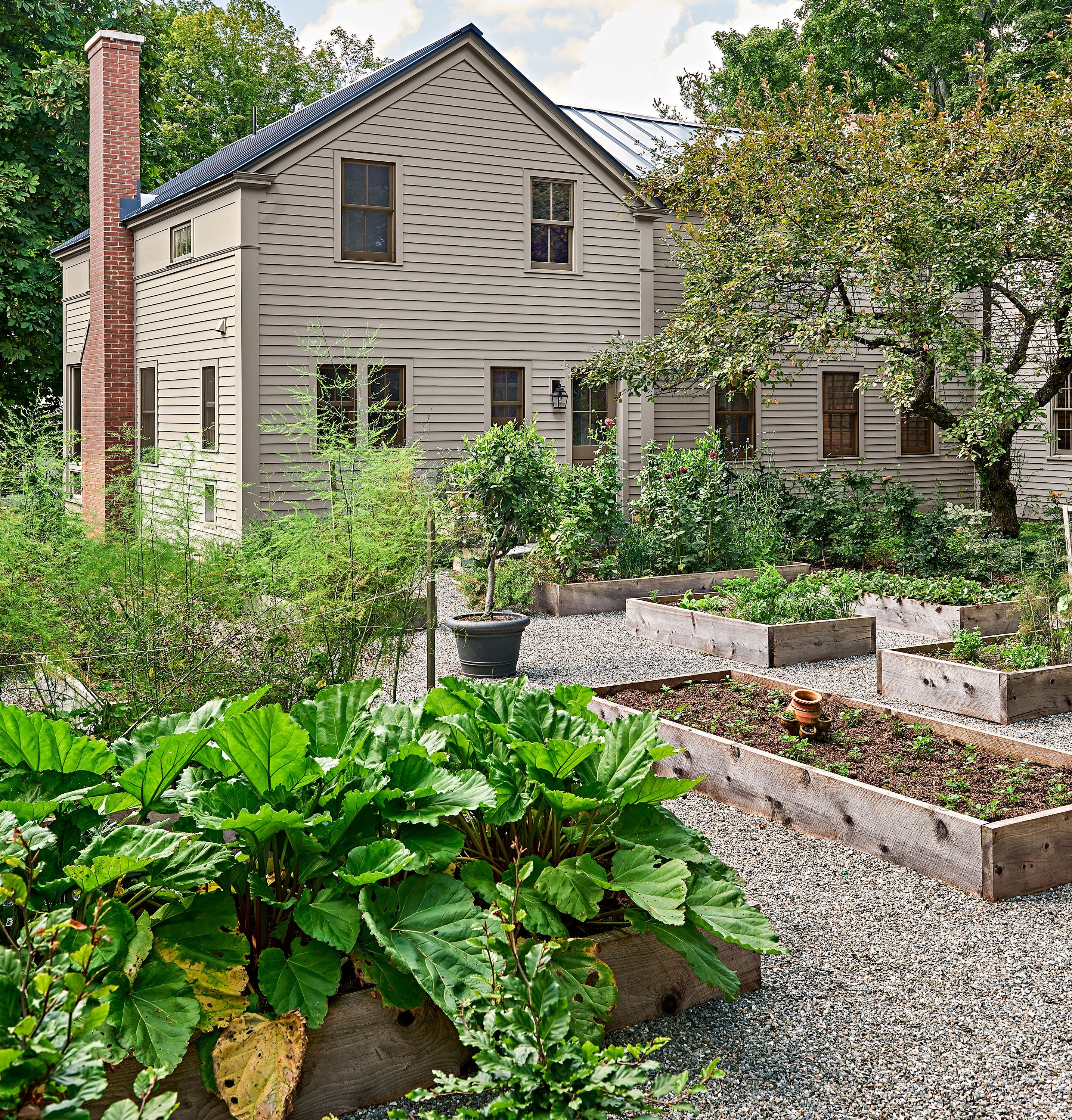 The Raised Bed Vegetable Garden Is Planted Where There Was Once An