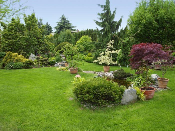 Vier Blumentöpfe Mit Zierbäume, Steingarten, Englischer Garten Vorgarten  Pflegeleicht Gestalten