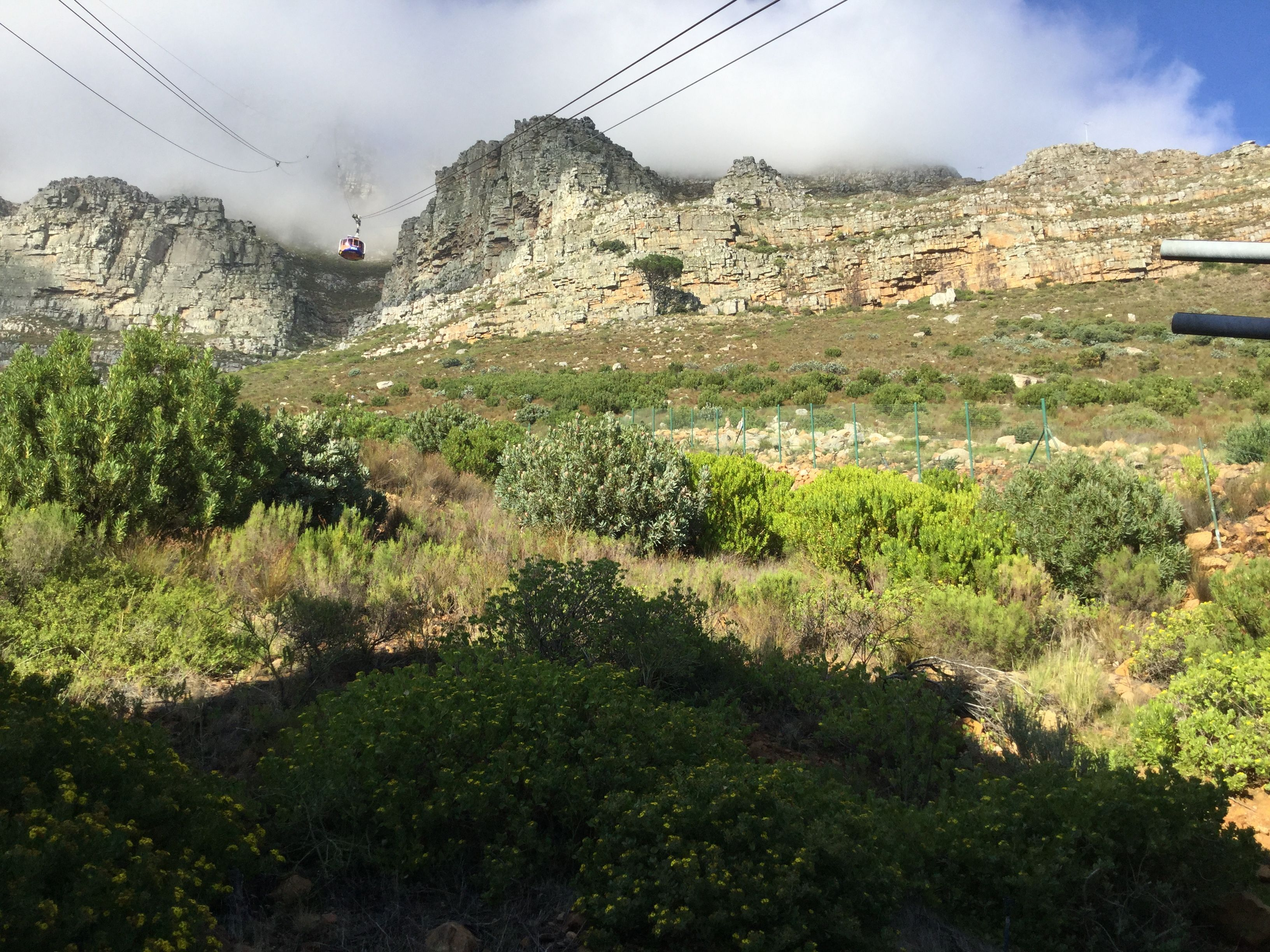 Pin By Clarissa Murpy On Table Top Mountain South Africa Pinterest - Table top mountain south africa